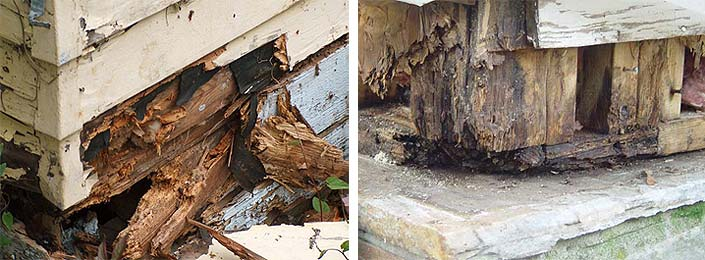 Rotten Wood Work on a Timber Garden Room